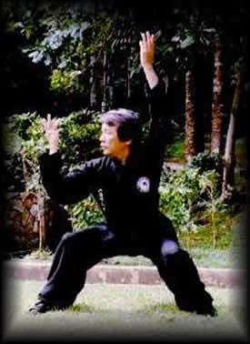 Maestro Su Yu Chang practicando Taichi